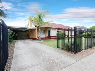 THIS ONE YOU WILL WANT!! - Elizabeth Grove