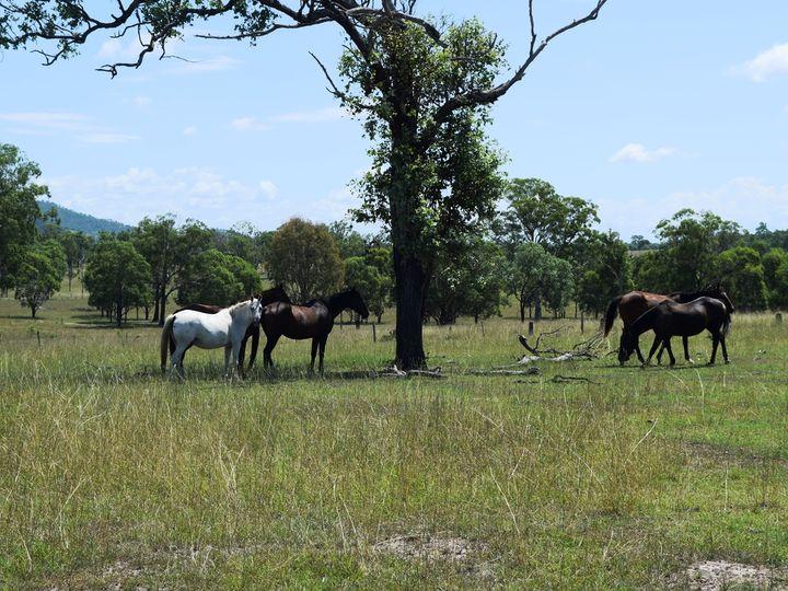 148 Dead Horse Lane, Toogoolawah, QLD