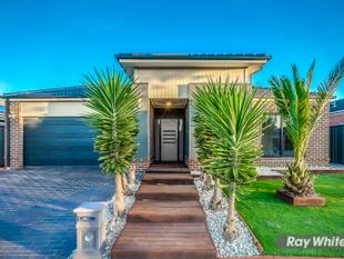 Beautiful Family Home - Tarneit