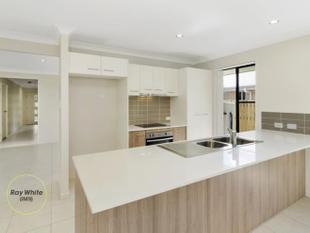 WHAT A HOME! REDUCED TO SELL - DONT MISS OUT! - Pimpama