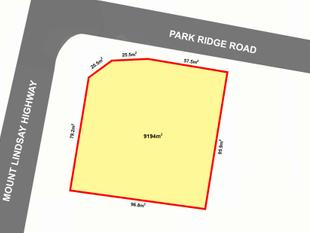 GOLDEN PROPERTY DEVELOPMENT OPPORTUNITY. MUST BE SEEN. - Park Ridge