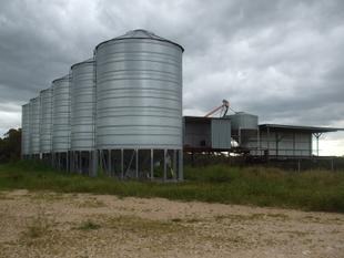 Cattle Feed Lot  - Must be Sold - Lameroo