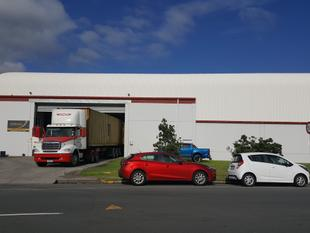 HUGE Warehouse By The Port - Mount Maunganui