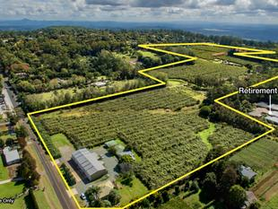50 acres of Agribusiness Development land - Tamborine Mountain