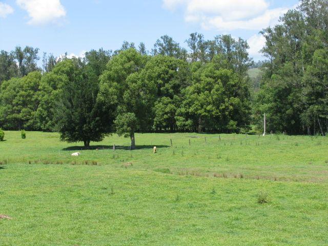 418 Upper Crystal Creek Road, Crystal Creek, NSW