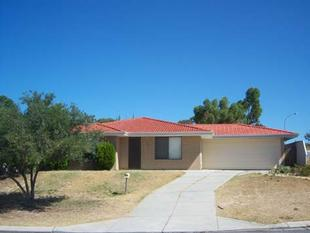 FRESHLY PAINTED 3 BEDROOM HOME!! - Mirrabooka
