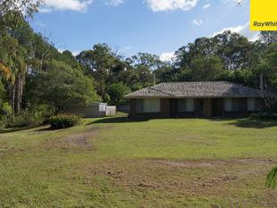 HOUSE, SHED AND INGROUND POOL - Browns Plains