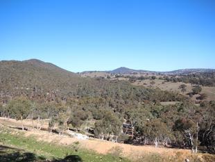 Mount Airey Bush Block - 274 Acres - Wisemans Creek