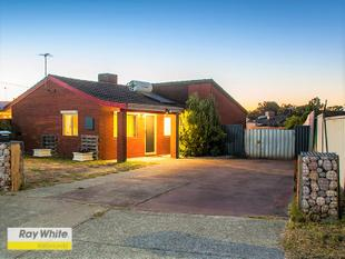 NEW PRICE  REDUCTION !!  THIS PROPERTY MUST BE SOLD !!!! - Forrestfield