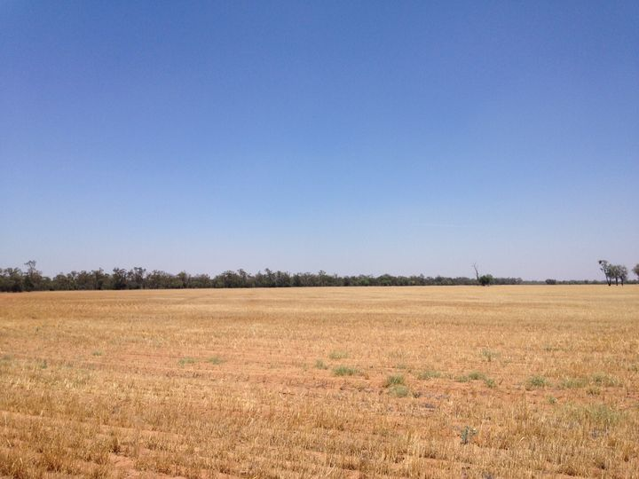 Lot 79 CARNARVON Highway, St George, QLD