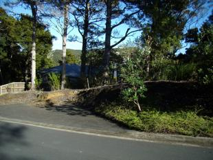 Appealing section with native bush views - Paihia