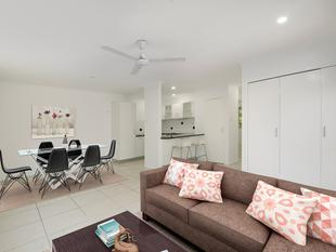 With a Massive Courtyard Bigger than Most Yards : 205m2 outdoor area - Moorooka