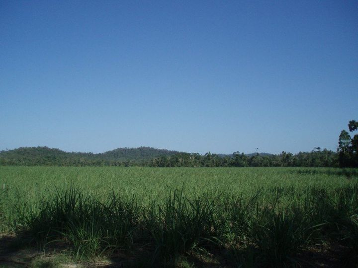 Granadilla, QLD