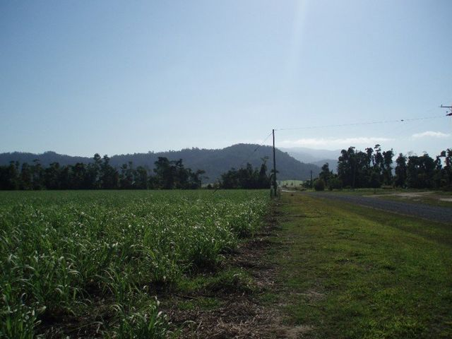 Granadilla, QLD