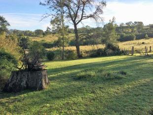 Lovely cottage available now..... - Dungog