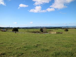 Bare Land With Views - Kerikeri