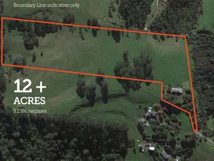 12 Acres, Spacious Home, Central Location! - Waitakere