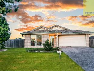 Perfect for first home buyers and investors - Marsden