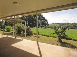 GREAT LIFESTYLE PROPERTY - Malanda