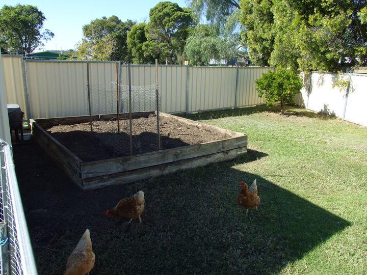 5 Nolan Street, Crows Nest, QLD