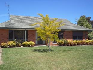 Quiet Court Location - Moama