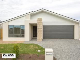 Perfectly designed near new home / Pet friendly - Leichhardt