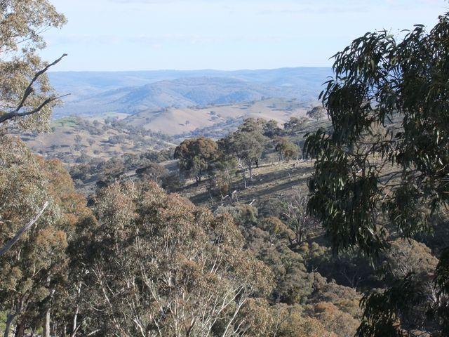 Turondale, NSW