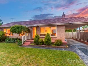 Perfectly Positioned - Springvale