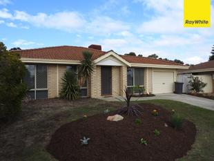 COLD WEATHER - HOT BUY! - Seville Grove