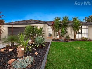 Fall In Love with this Stunning Family Oasis - Rowville