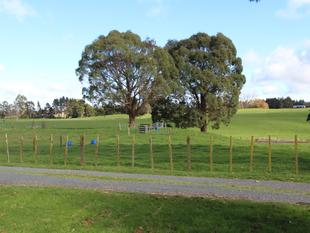 JUST LOOK AT THAT VIEW - and subdividable - Tokoroa