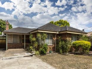 Eight hundred  metres from Chadstone Shopping Centre ! - Malvern East