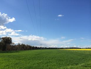 LARGE SCALE INDUSTRIAL DEVELOPMENT SITE - IN1 (120acres) - Cowra
