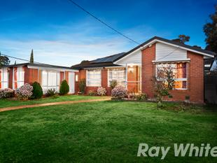 7 Bedrooms on 916m2 - Wantirna