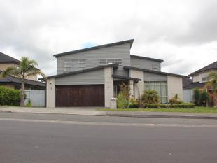 Ideal family home in Albany - Albany