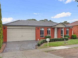 The Ideal Start or Perfect Investment - South Morang