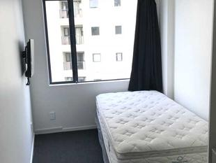 Studio apartment in Auckland City - Auckland Central