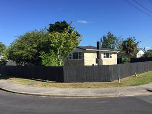 3 bedroom + cabin and double garage - Papakura