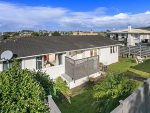 spacious  home house in a prime location - Mairangi Bay