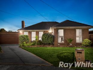 FAMILY COMFORT WITH REWARDING POTENTIAL - Burwood East