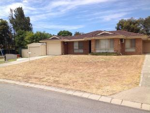 3 BEDROOM FREE STANDING DUPLEX - ENQUIRE TODAY! - Maddington