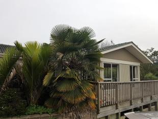 Three Bedroom Home $480 P/W - Ranui