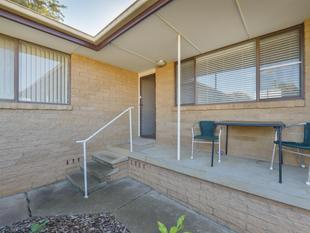 FANTASTIC TENANT - GREAT BACKYARD - Tamworth