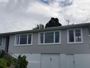 Large Family Home recently renovated - Parkvale