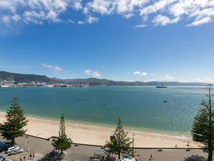 """An Exceptional Apartment"" - Oriental Bay"