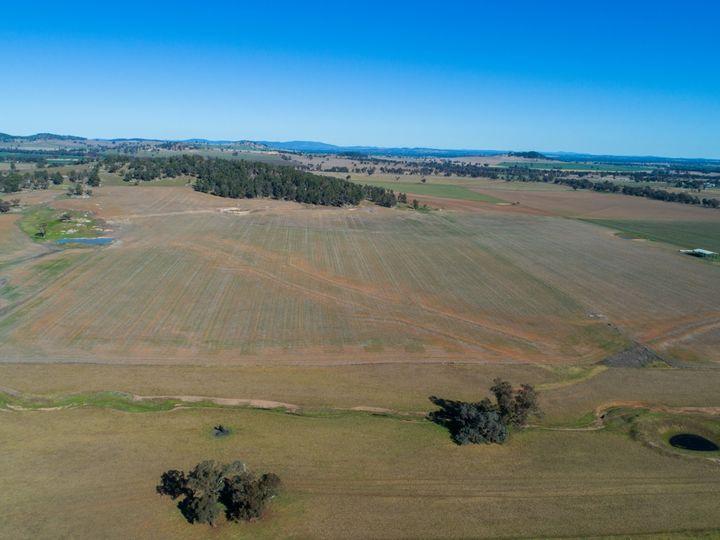 165 Pengillys Lane, Eugowra, NSW