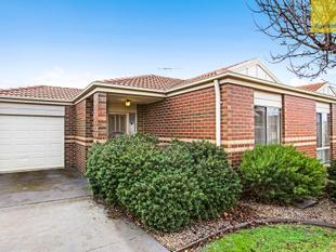 Golden Opportunity! - Sydenham