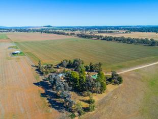High Quality Finishing & Cropping Country - Eugowra