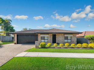 METICULOUSLY MAINTAINED - ALL THE BELLS AND WHISTLES!! - Burpengary