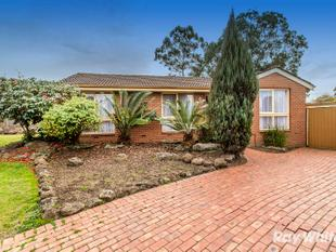 Neat and Tidy 3 Bedroom Home - Ferntree Gully